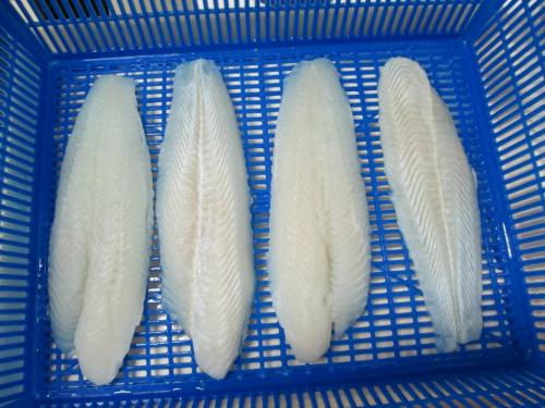 Pangasius Fillet White Meat