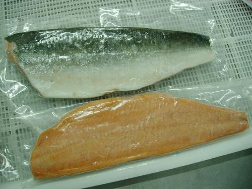 Frozen Salmon Fillet Skin On